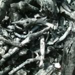 木炭(もくたん)