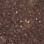 堆肥(たいひ)