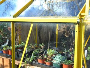 温室、ハウスともいう