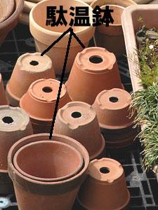 縁に釉薬がかけられた駄温鉢