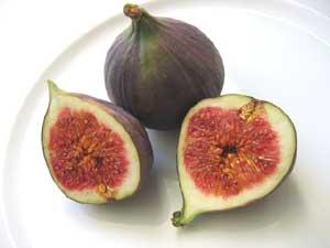 イチジクの果実は偽果である