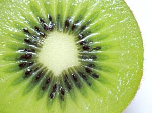 キウイフルーツは漿果の一種